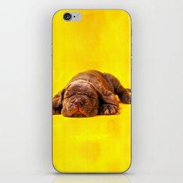 Cane Corso - Italian Mastiff Puppy iPhone Skin
