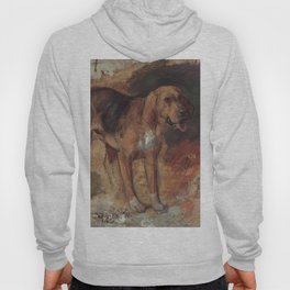 Study of a Bloodhound Hoody