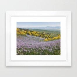California Wildflowers Framed Art Print