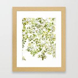 Treetops  Framed Art Print