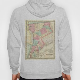 Vintage Map of Westchester New York (1864) Hoody