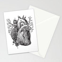 Human Heart Anatomy Detailed Illustration Stationery Cards
