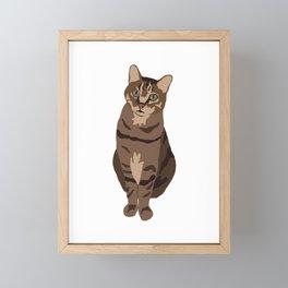 Tabby Cat Framed Mini Art Print