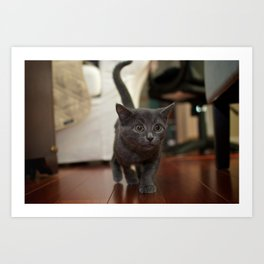 My, what Big Eyes you have... Art Print
