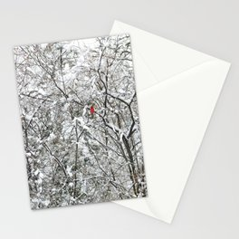 Bright Cardinal in the Snowy Woods Stationery Cards