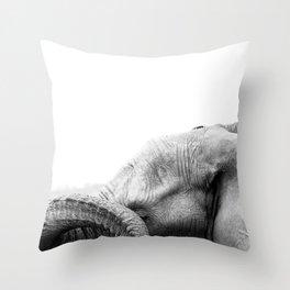 Bashful Beauty Throw Pillow