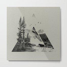 Natural Shapes Metal Print