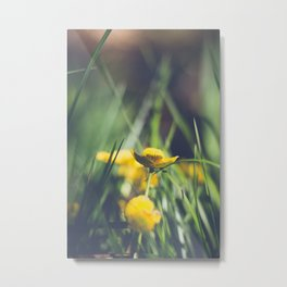 Yellow Flower in Green Grass Metal Print
