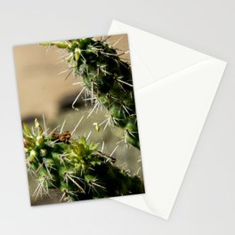 Prickles Stationery Cards
