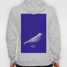 Blue Bird in the Snow Hoody