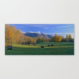 Three Seasons Canvas Print
