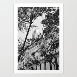 New York Library Art Print