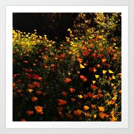Beautiful garden flowers Art Print