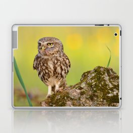A little owl with a grasshopper. Laptop & iPad Skin