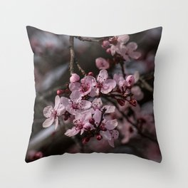 Spring Cherry Tree Blossoms - II Throw Pillow