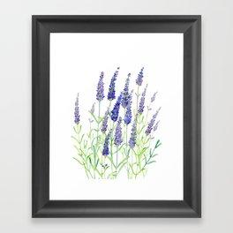 Watercolor Lavender Bouquet Framed Art Print
