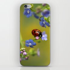 Forget me not... iPhone & iPod Skin