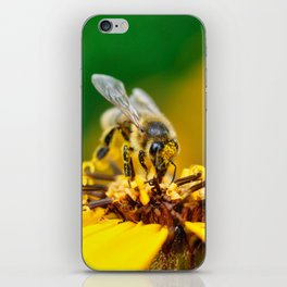 A bee on the flower iPhone Skin
