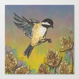 Coal Tit and Teasels Canvas Print