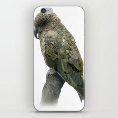 Kea Pattern iPhone & iPod Skin