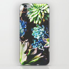 So many succulents, so little time. iPhone Skin