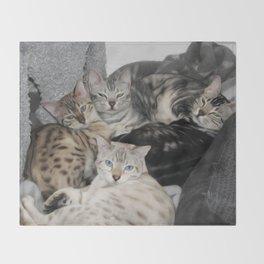 Bengal Cat Kitty Pile  Throw Blanket