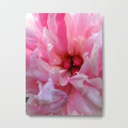 Blush - Pink Peony Metal Print