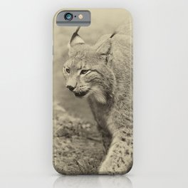 beautiful lynx iPhone Case