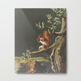 Vintage Squirrel Art, 18th Century Metal Print