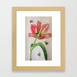 A Tulip for you ! Framed Art Print