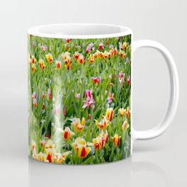 Long View of a Field of Multicolored Tulips in Amsterdam, Netherlands Coffee Mug