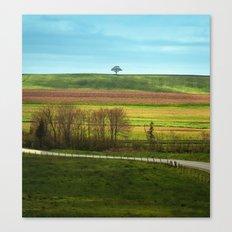 Distant Solitude Canvas Print