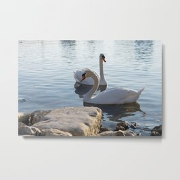 Love is in the air... Metal Print