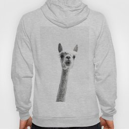 alpaca #society6 #decor #buyart Hoody
