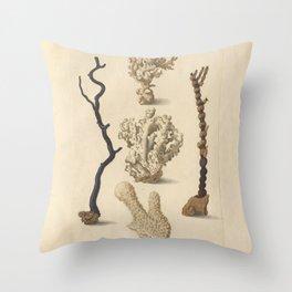 Naturalist Coral Throw Pillow