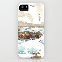 Greenland iPhone Case