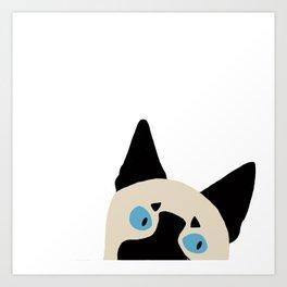 Peeking Siamese Art Print