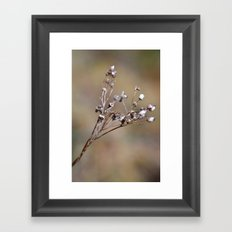 Germinating Framed Art Print
