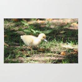 Baby Duckling strolling on a lawn Rug