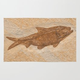Knightia Herring Fish Fossil Rug