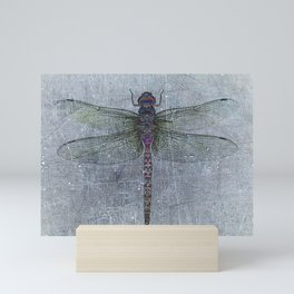 Dragonfly on blue stone and metal background Mini Art Print