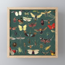 Lovely Butterfly Green Framed Mini Art Print