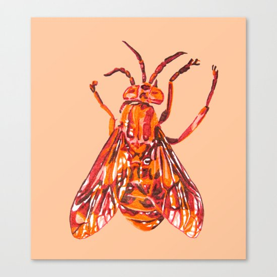 Horse Fly Canvas Print