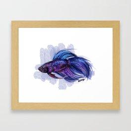 Beta fish Framed Art Print