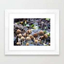 Mushroom City | Nature Photography Framed Art Print