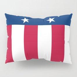 Texas state flag, High Quality Vertical Banner Pillow Sham