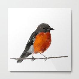 Robins Metal Print