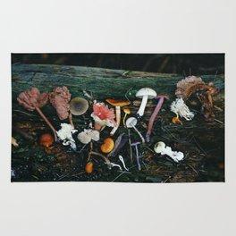 Little Mushrooms II Rug