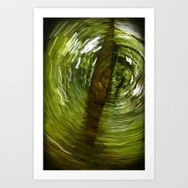 Springtime (Conditions Variable) Art Print