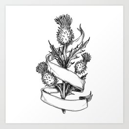 Scottish Thistle With Ribbon Sketch Art Print